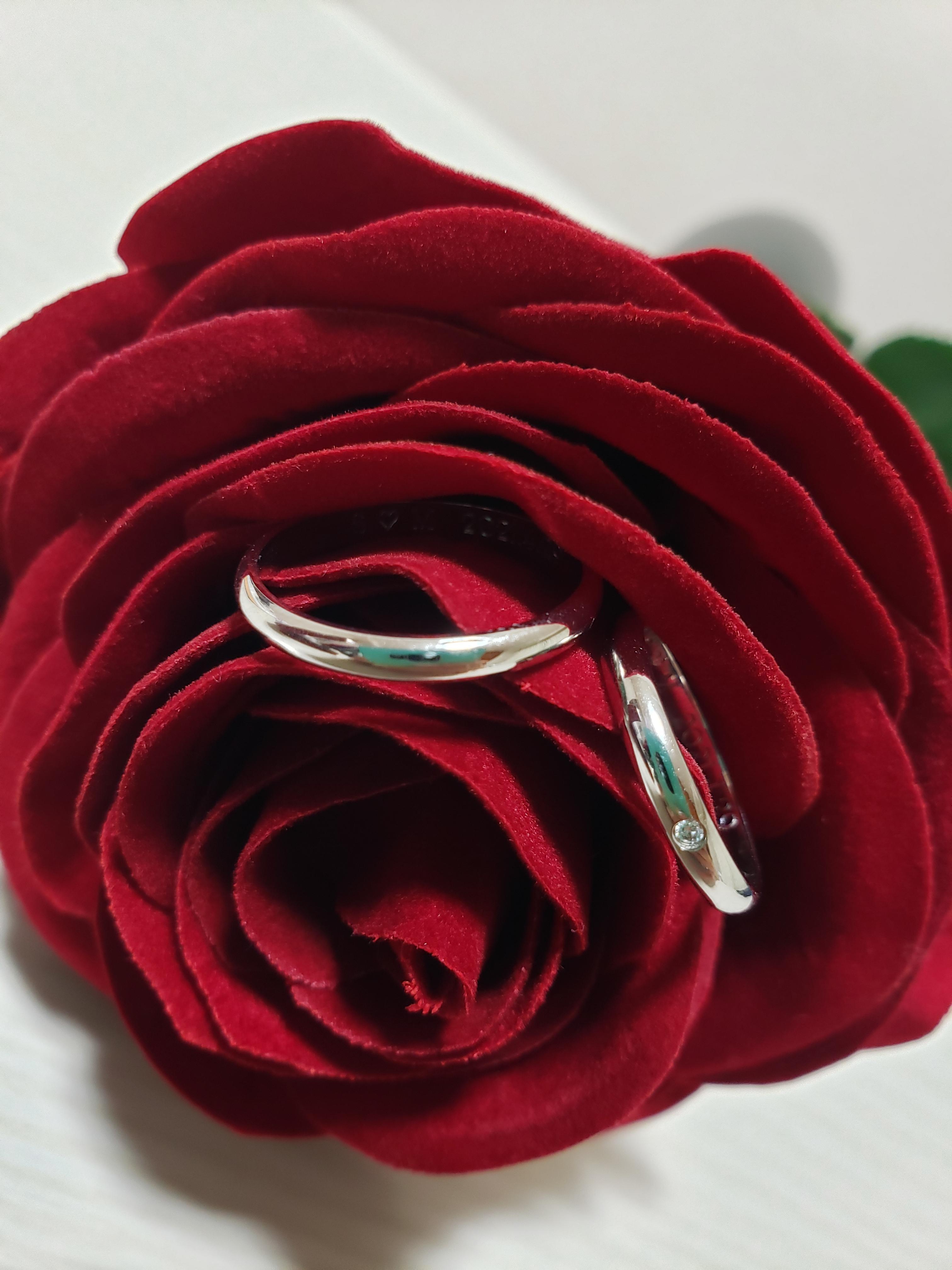 結婚指輪 プラチナ シンプル 甲丸